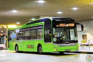 SMB3090E - Lush Green