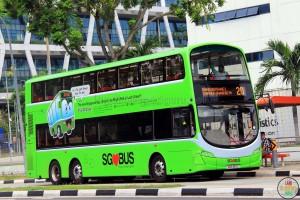 SBS3511Z - Lush Green