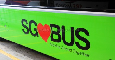 SG Bus Logo – Lush Green