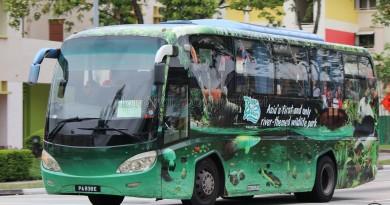 Travel GSH Zonda YCK6106HGM (PA838E) - Service 293P