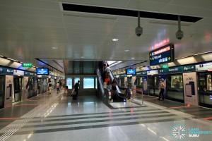 Newton MRT Station - DTL Platform level