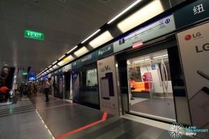 Newton MRT Station - DTL Platform A