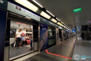 Newton MRT Station - DTL Platform B