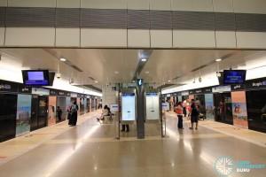 Bugis MRT Station - DTL platform