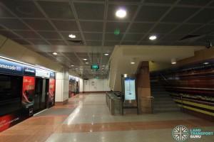 Promenade MRT Station - DTL Lower Platform level (B7)