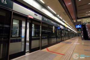 Cashew MRT Station - Platform A