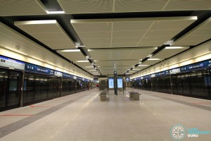 Sixth Avenue MRT Station - Platform level