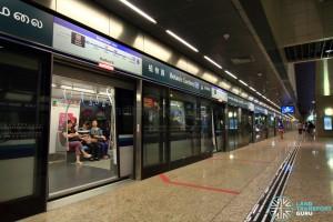 Botanic Gardens MRT Station - DTL Platform A