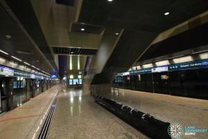 DTL Platform level