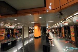 Newton MRT Station - NSL Platform level