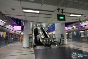 NEL Platform level