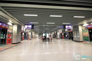 Punggol MRT/LRT Station - NEL Platform level