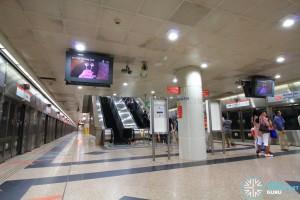 NSL Platform level: Escalators