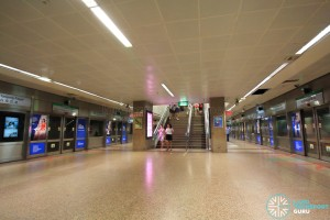 Tanjong Pagar MRT Station - Platform level