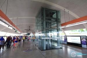 Platform level