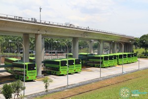 New MAN A95 buses at Woodlands Regional Bus Interchange