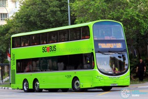 Go-Ahead Volvo B9TL Wright (SG5074S) - Service 119