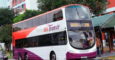 SBS Transit Volvo B9TL Wright (SBS7H) - Service 291