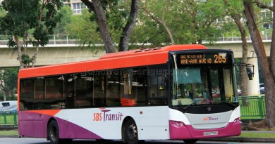SBST Scania K230UB (SBS8750S) - Service 265