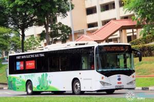 Go-Ahead BYD K9 (SG4001J) - Service 17