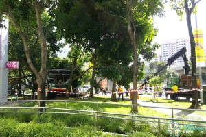 Workers arrive to clear trees from the scene