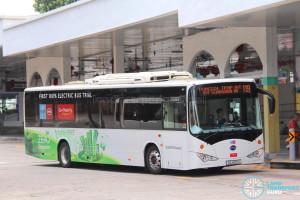 Go-Ahead BYD K9 (SG4001J) - Service 119