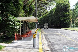 43891 Dairy Farm Road - Future bus stop for Service 973 (towards Bukit Panjang)