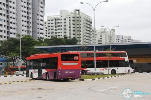 Compassvale Bus Interchange - Bus Park with Training Buses