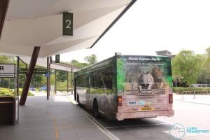 Mandai Express - Singapore Zoo Pickup Point