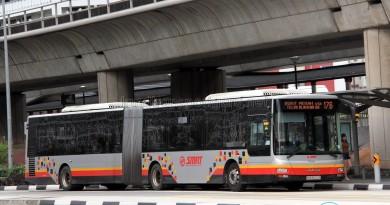 SMRT MAN NG363F A24 (SMB8024P) - Service 176