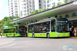 SMRT Buses - MAN Lion's City SD 3-Door (SG4002G) at Choa Chu Kang Bus Interchange (Alighting berth)