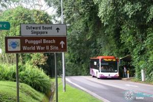 Punggol Coast MRT Station - Current scene along Punggol Road