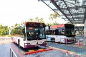 Service 123 lots at Beach Station Bus Ter