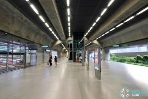 Expo MRT Station (EWL) - L1 paid area with paid link to DTL