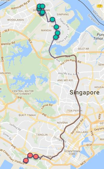 Route G65 at a glance. Map Image: Beeline.sg