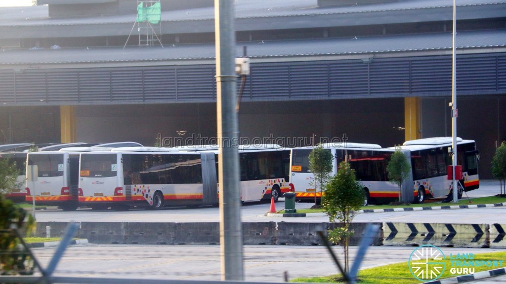 SBS Transit MAN A24 buses in Seletar Depot