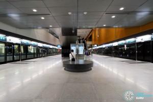 Tampines MRT Station - DTL Platform level (B3)