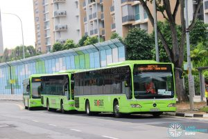 Tower Transit and Go-Ahead Mercedes Benz Citaro buses on Shuttle 8