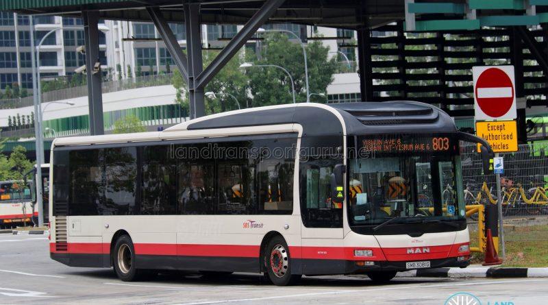 Service 803 - SBS Transit MAN A22 (SMB3081G)