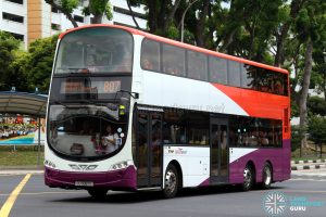Service 807 - SBS Transit Volvo B9TL Wright (SG5087E)