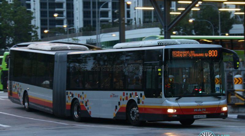Service 800 - SBS Transit MAN A24 (SMB8005U)