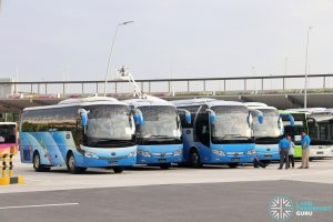Express 12 buses at the T4 Coach Stand
