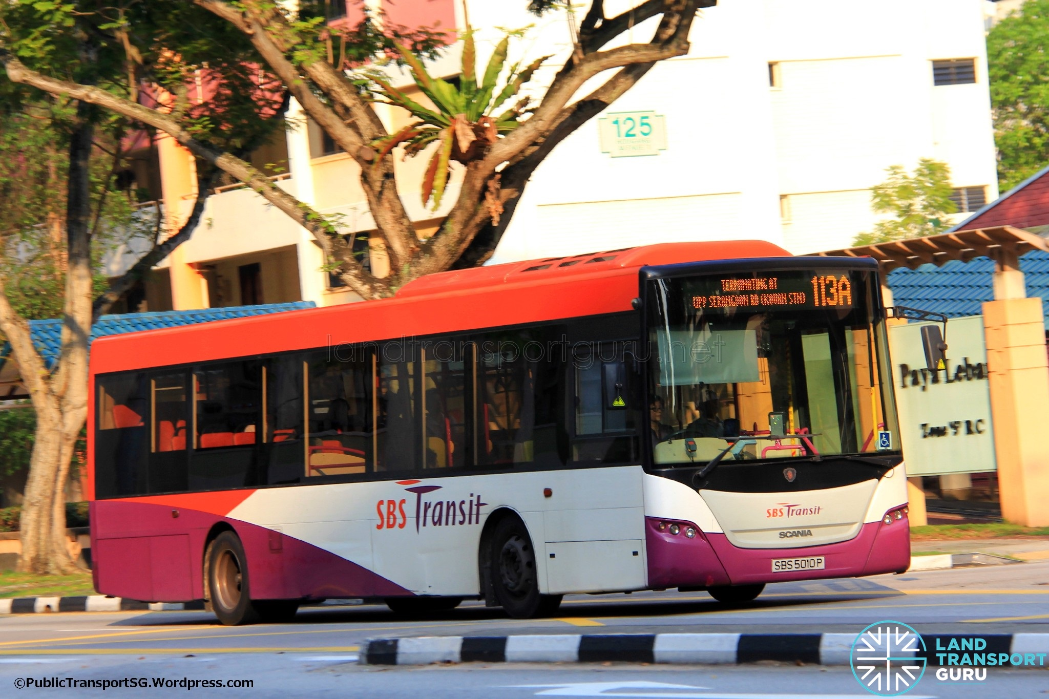 Service 113A: SBS Transit Scania K230UB Euro V (SBS5010P)