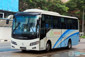 Aedge Holdings Golden Dragon XML6957J14B (PC4067B) - City Direct 664
