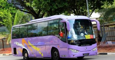 Smart Bus Golden Dragon XML6957J14 (CB6613X) - Premium 745