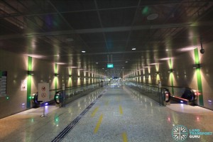 Botanic Gardens MRT Station - Paid link (CCL to DTL)