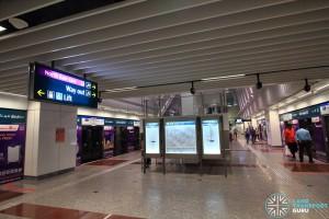 Little India MRT Station - DTL Platform level