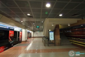 Promenade MRT Station - DTL Lower Platform level (B7)