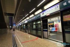 Botanic Gardens MRT Station - DTL Platform B