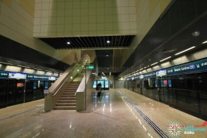Botanic Gardens MRT Station - DTL Platform level